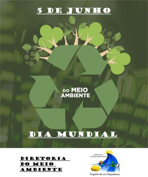 Dia Mundial do Meio Ambiente, Por: João Paulo Alves Calçado; Diretor do meio Ambiente.